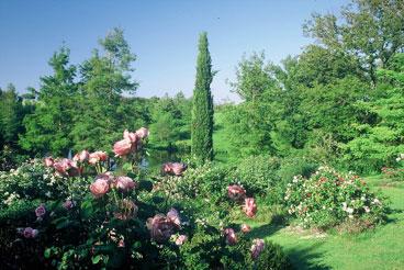 Giardini della landriana natura ardea roma for Architetto giardini roma