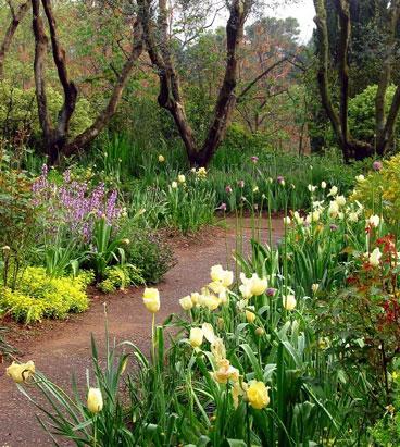 Giardini della landriana natura ardea roma for Immagini di giardini